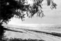 Queensland State Archives 1013 Sunset on Green Island near Cairns c 1931.png