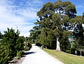 Queenstown Gardens, New Zealand (11).JPG