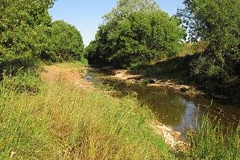 Río Cueza afluente del Carrión.jpg