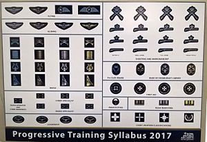 Air Training Corps - RAF Air Cadet Progressive Training Syllabus
