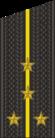 RAF N F2-KaptLt 2010–