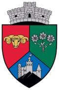 Bran coat of arms