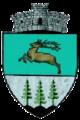 ROU SV Boroaia CoA.png