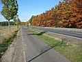 Radweg Zauchwitz - Beelitz entlang der B246 - panoramio.jpg