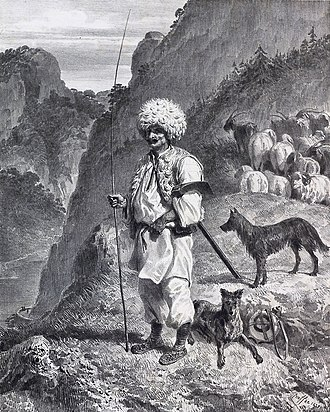 Transhumance - Vlach shepherd in Banat