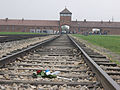 Rampa Obóz Birkenau.jpg
