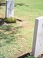 Ravenna War Cementery 41.JPG