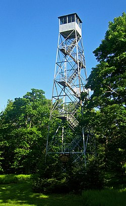 A silvery metal lattice tower, narrowing to a small enclosed cabin with windows on the top, in a clearing in some woods