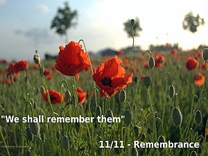 Remembrance Wallpaper.jpg