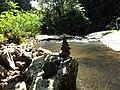 Reserva Familia Lima - panoramio (13).jpg