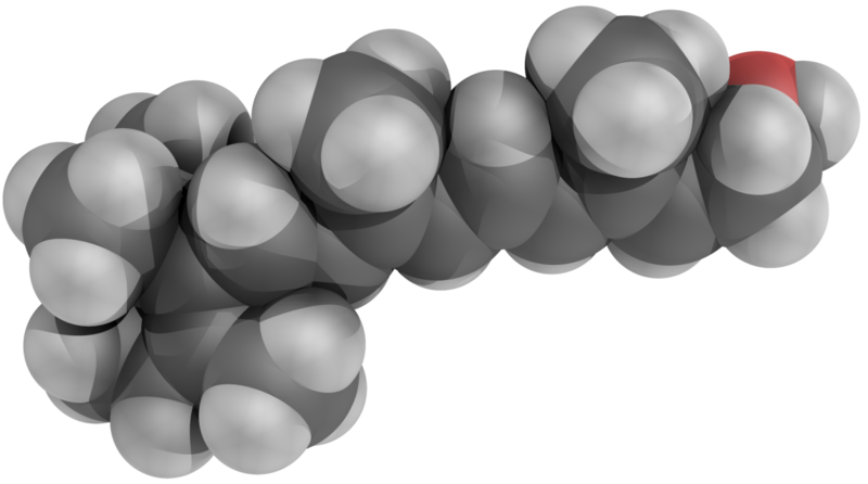 Retinol or Vitamin A 3D space model (balls model), by YassineMrabet, on Wikimedia Commons