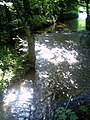 Reute Wasserschutzzone - panoramio.jpg