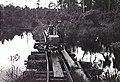 Rickety bridge of narrow gauge railway near Badas, Borneo (AWM 115588).jpg