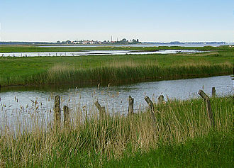 Riems - View from the island of Koos over the salt meadows to Riems