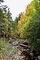 Rincones de la Sierra Cebollera.jpg