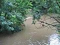 River Stour at Eccliffe - geograph.org.uk - 500039.jpg