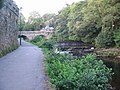 Riverside walk - geograph.org.uk - 203513.jpg