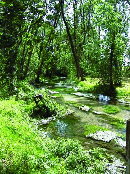 """Het riviertje la Noblette; hier bij La Cheppe - Marne, Champagne-Ardenne -  stroomt het gedeeltelijk langs een Keltisch omwalling (Ie eeuw v.C.). In de negentiende eeuw kreeg dit oppidum van de vlakte de benaming """"Camp d'Attila""""."""