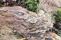 Roches seyssuel terroir.jpg