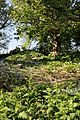 Rock Garden at Myddelton House, Enfield, London, England 02.jpg