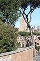 Rom, Blick zum Torre delle Milizie.JPG