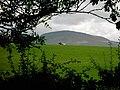 Roman Fell - geograph.org.uk - 254736.jpg