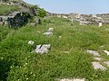 Romania-Histria (ancient city) 2008zl.jpg