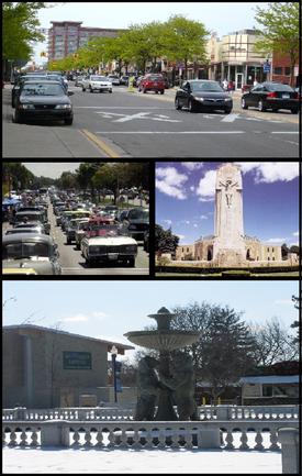 Pictured top to bottom: Downtown Royal Oak, the Woodward Dream Cruise, the National Shrine of the Little Flower, and the Rackham Memorial Fountain at the Detroit Zoo
