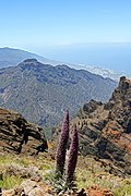 Roque de los Muchachos Insel La Palma.jpg