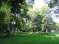 Rothschildpark - Frankfurt am Main - DSC02352.JPG