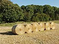 Round straw bales, Codford Down - geograph.org.uk - 540119.jpg