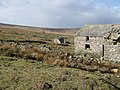 Ruins above Allenheads (3) - geograph.org.uk - 720635.jpg