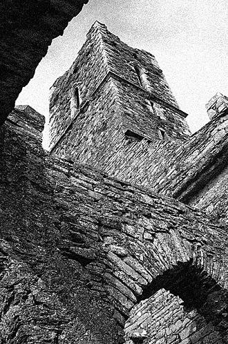 Timoleague - Ruins of Timoleague Abbey