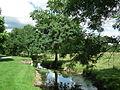 Ruisseau à Cravans.JPG
