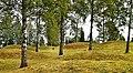 Runnevåls Gravfält (2).jpg