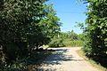 ST. NEVSKOGO, juraji place (2011-08-09 11-13) - panoramio.jpg