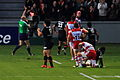 ST vs Gloucester - Match - 45.JPG
