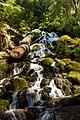Saltos de agua.jpg