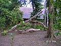 Sandoval Lake Lodge , Tambopata - panoramio (1).jpg