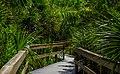 Sanibel Beach Boardwalk RCR-TR-BW-6.jpg