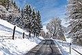 Sankt Urban Zirkitz Strasse nach Sankt Paul Winterwald 12012016 9995.jpg