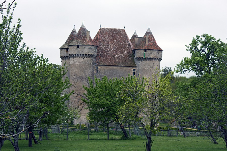 English:  Castle of Sarzay, seen from the road to Santiago at the center of the village.