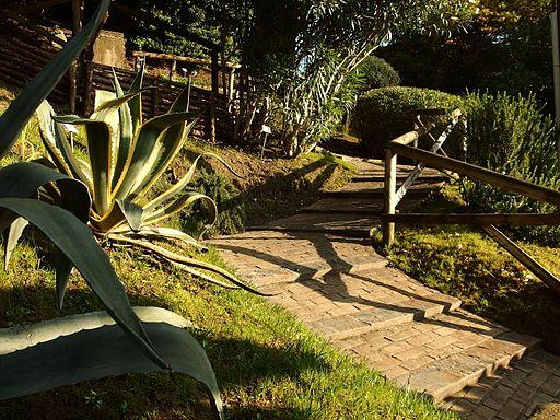 Scala dell'orto botanico