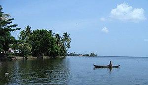 Scenes fom Vembanad lake en route Alappuzha Kottayam63.jpg