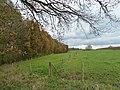 Schimmert-Terrein Billicherweg (1).JPG