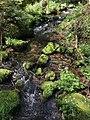 Schweinbachtal Wasserimpressionen.jpg