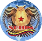 Seal of SEBIN.png