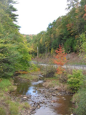Larrys Creek - The Second Fork is the largest tributary. Pennsylvania Route 287 runs parallel to it for its entire length.