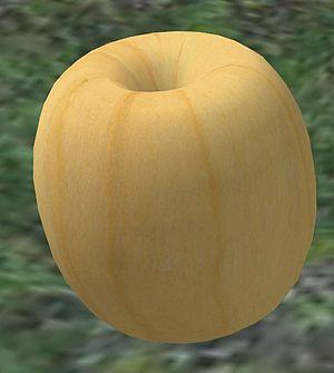 Geometric primitive - A 3D torus prim created in Second Life