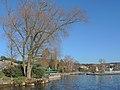 Seebad Tiefenbrunnen 2014-02-20 16-04-39 (P7800).JPG